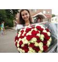 Букет Любовь и голуби из 101 белой и красной розы