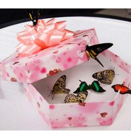 Микс бабочек