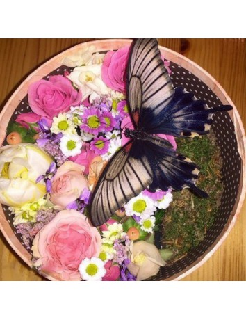 Цветочная Бабочка