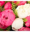 Букет Заветное желание из белых и розовых пионов