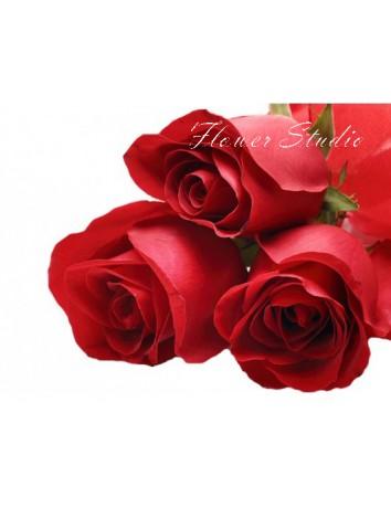 Букет Пучина страсти из 5 красных роз
