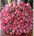 Букет Нежный поцелуй из 101 розы