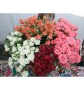 Букет Нежная роза из белых и кремовых кустовых роз