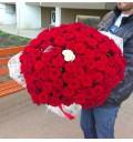 Букет Избранная из красных и белых роз