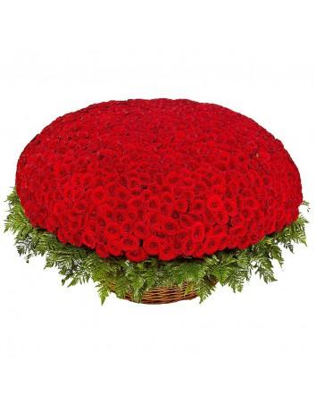 Корзина Миллион алых роз