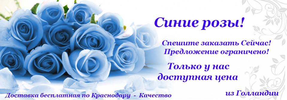 6. синие розы