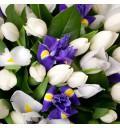Букет Весенняя радость с ирисами и тюльпанами