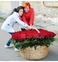 Букет Прямо в сердце из 501 красной розы в корзине