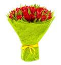 Букет Моей единственной из 51 красного тюльпана